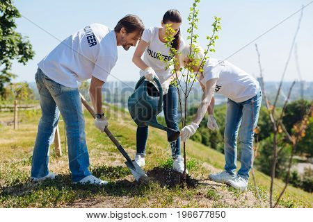 United for nature. Devoted inspired excited people joining eco initiative and providing their services pro bono while planting trees
