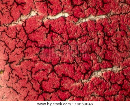 Solidified coagulated blood seen on a 100x microscope view. Platelets and red blood cells form the structures. poster