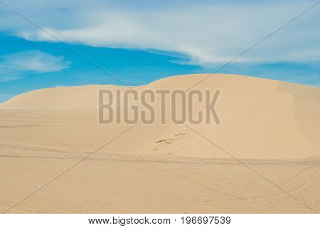 Yellow Sand In The Desert, Vietnam