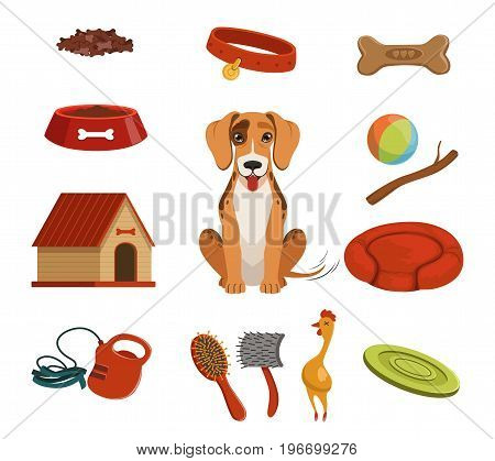 Different accessories for domestic pet. Dog in house. Vector illustrations set. Animal pet dog and accessories leash and dog kennel