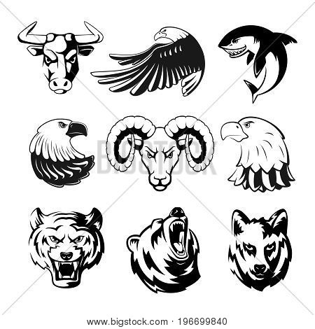 Heads of animals for logo or sport symbols. Grizzly, bear and eagle. Monochrome mascots illustrations for labels. Wolf, shark and ram. Big vector set of animals heads tattoo
