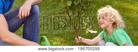 Smiling Boy Holding Tree Seedling