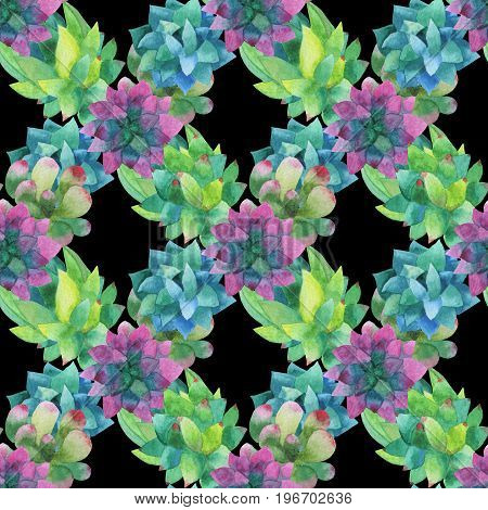 Seamless pattern made of hand-drawn watercolor succulent plants multicolored. For invitations, greeting cards, posters, packing and more