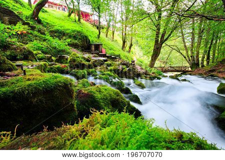 Autumn landscape with mountain river flowing among mossy stones through the colorful forest. Silky smooth stream of clear water in the wood.
