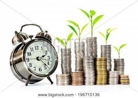 Trees are growing on a pile of coins with a clock over white background. Concepts of business money saving and business growth.