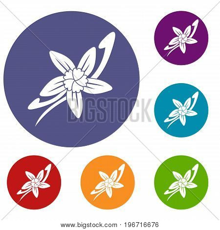 Vanilla sticks with a flower icons set in flat circle red, blue and green color for web