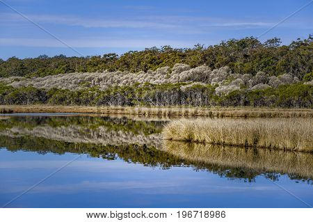 Still river with mirror like water surface reflecting native Australian Vegetation and blue sky