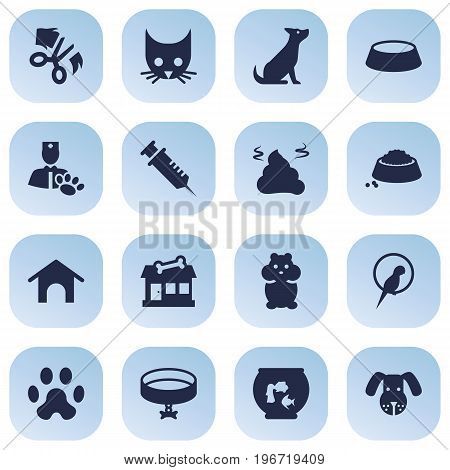 Collection Of Dog, Home, Dish And Other Elements.  Set Of 16 Pets Icons Set.