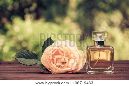A perfume bottle and a fragrant yellow rose. Natural perfume in a square bottle on a green blurred background. Elixir of fragrant roses. Vintage tinting