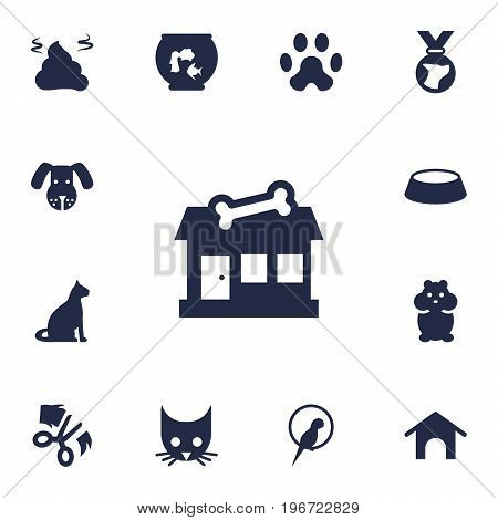 Collection Of Fishbowl, Cat, Head And Other Elements.  Set Of 13 Pets Icons Set.