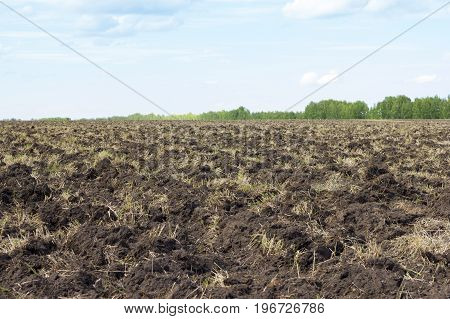 Plowing of the earth. Preparing the ground for sowing seeds. Agriculture