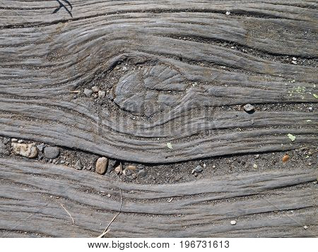 Old, dried wood, suitable for natural background
