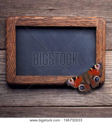 butterfly on old school blackboard on a background of blackened wood panels
