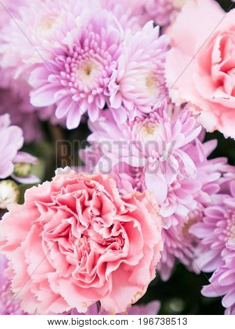 Beautiful Elegance Pink Pastel Color Flowers
