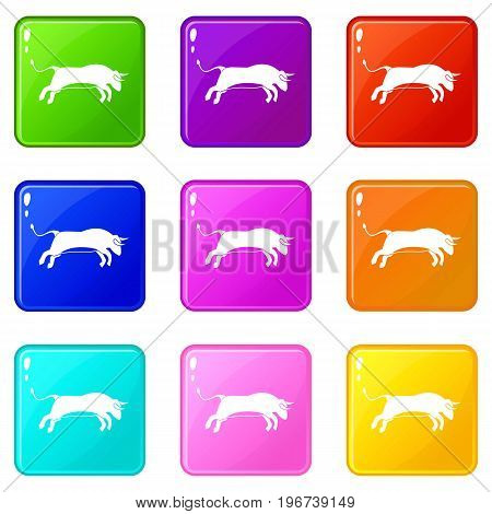 Bull icons of 9 color set isolated vector illustration