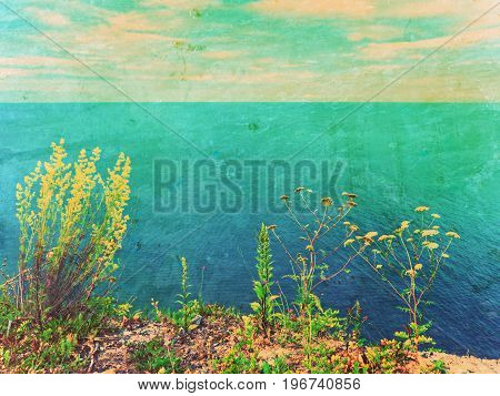 Film Effect.grass Straw On View Point Above Sea Level. Grass Stalks, Blue Water Level In Contrast.