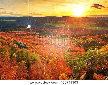 Film Effect. Fresh Vivid Colors Of Autumnal Forest.  View Over Birch And Pine Forest To  Deep Valley