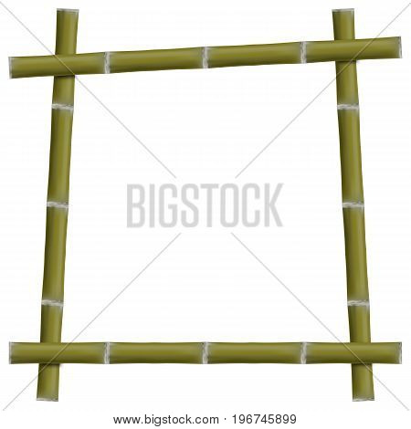 Empty frame with green bamboo stalks isolated on white background vector illustration.
