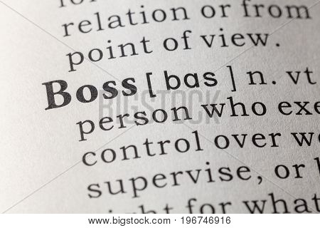 Fake Dictionary Dictionary definition of the word boss.