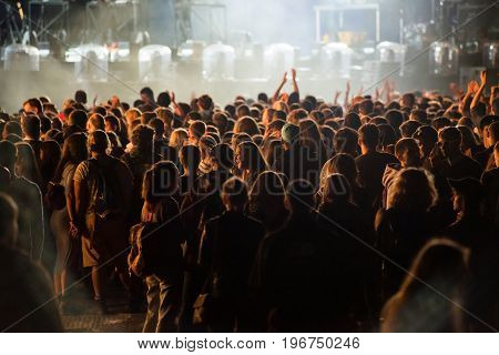 Crowd Of People Enjoying An Electronic Concert At A Festival