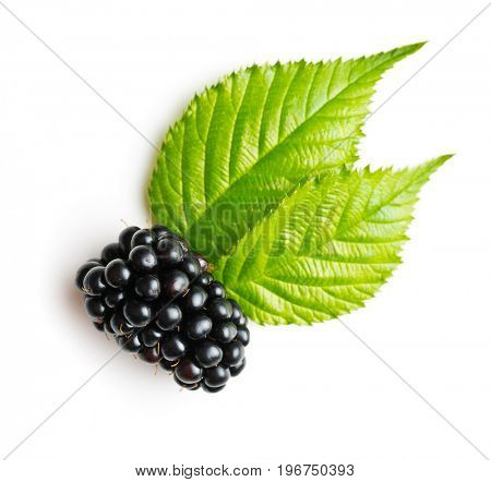 Tasty ripe blackberry and leaves isolated on white background.