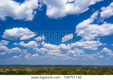 Beautiful Sky And Jungle Landscape