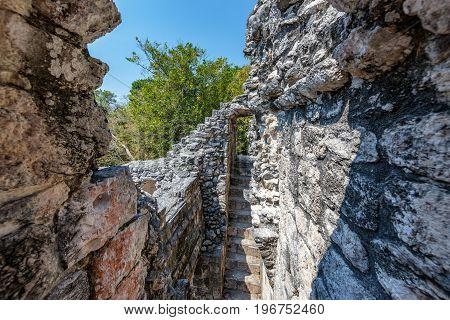 Interior View Of Mayan Ruins