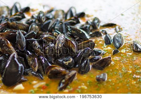 Fresh Mussels At Grill Pan. Seafood Barbecue Outdoors. Picnic Healthy Food, Mussels In Shells. Plent