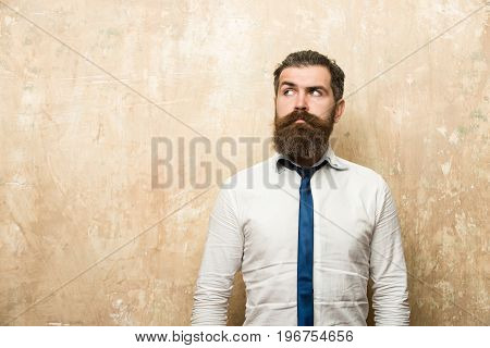 long bearded man or hipster with stylish hair on serious face in tie and white shirt on textured beige background copy space
