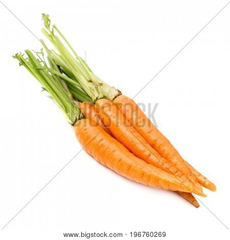 Heap of fresh carrots with stems isolated on white background