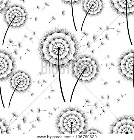 Beautiful black - white seamless background with stylized dandelion and flying fluff. Floral pattern with summer or spring flowers. Stylish trendy nature wallpaper. Vector illustration