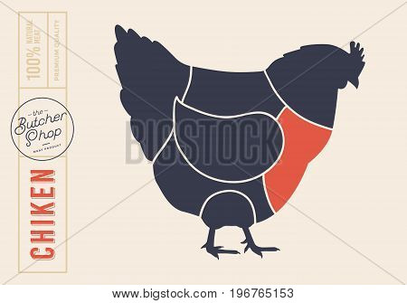 Chicken cuts. Diagrams for butcher shop. Scheme of chicken. Vector illustration.