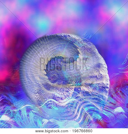 Abstract wavy background with spirals and shell. Blue, pink, gray and white water background with rounded object resembling sea shell