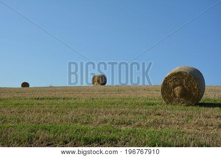Straw bales on harvested field with two hay bales  in horizon  and blue sky