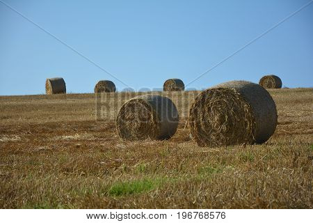 Some Straw bales lie in a landscape