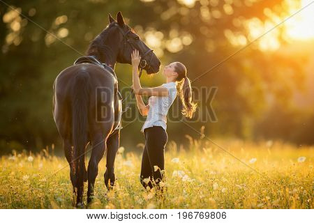 Young woman kissing horse in evening sunset light. Outdoor photography with fashion model girl.