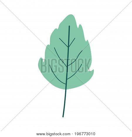 green light color of small lobed leaf plant vector illustration