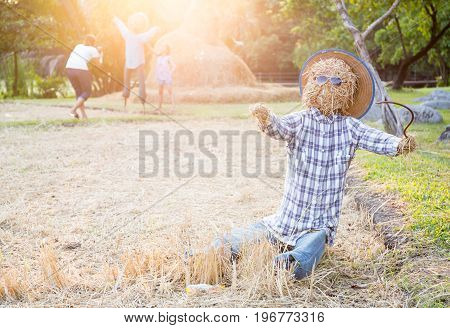 The scarecrow and tropical farm in summer