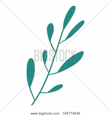 hand drawing closeup green color leaf oval shape with several ramifications vector illustration