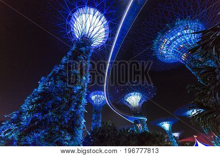 SINGAPORE - MARCH 22 2017: Night shoot of of Supertree Grove at Gardens by the Bay Park in Singapore. Futuristic art.