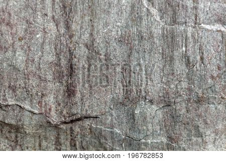 The surface of Phyllite schists of Proterozoic age from the Thuringian mountains in central Germany.
