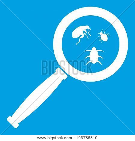 Magnifier and insects icon white isolated on blue background vector illustration