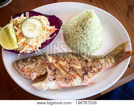Grilled red snapper, cilantro rice and cole slaw beautifully presented in Belizean style.