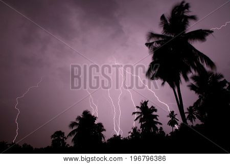 Thunder, lightning storm in the raining night background over a house and palm tree. In Mumbai