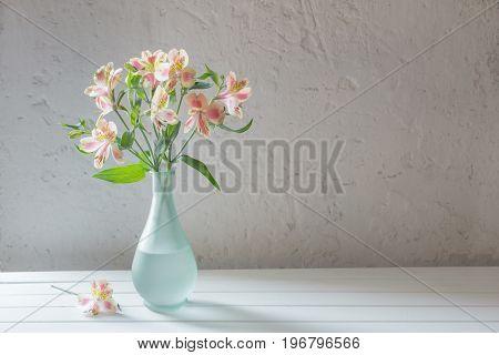 Alstroemeria in vase on grunge white background
