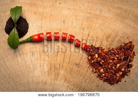 Chilli Red pepper flakes and chilli powder.