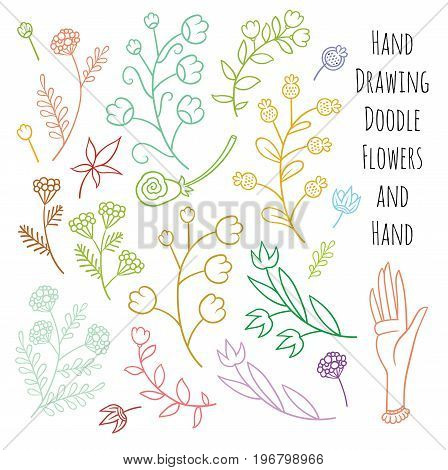 Set of summer flowers delicate shades - vector hand drawing art
