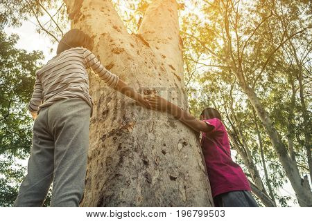 Children embrace the tree as a symbol of love for the forest Concept love the tree.