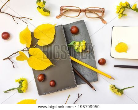 Closeup of leather pen case notebook pencils and glasses on white background. Decorated with autumn yellow leaves flowers and branches. Top view flat lay
