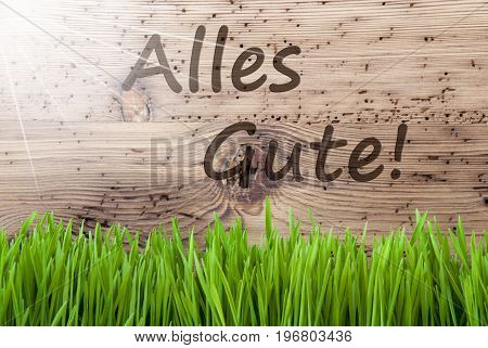 German Text Alles Gute Means Best Wishes. Spring Season Greeting Card. Bright, Sunny And Aged Wooden Background With Gras.